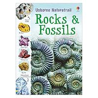 Usborne Naturetrail : Rocks and Fossils