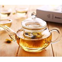 Ấm phà trà thủy tinh zeno ATT06 - 260ml