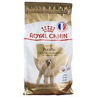 Thức ăn cho chó Royal Canin Poodle Adult 1,5kg