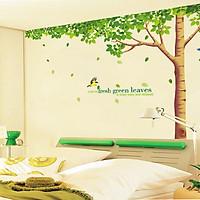 decal dán tường cây sồi mùa xuân 3 mảnh xy1098