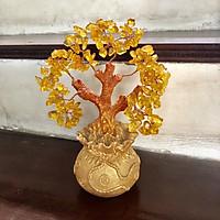 cây tài lộc đá thạch anh vàng