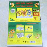 Combo 5 Miếng Keo Dính Chuột Siêu Dính