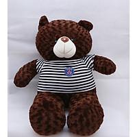 Gấu bông gấu Teddy cao cấp ngộ nghĩnh đáng yêu khổ vải 1m6 cao 1m4 màu socola