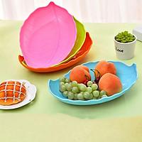 Combo 5 Đĩa nhựa đựng trái cây hình chiếc lá - Màu Ngẫu nhiên