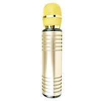 Micro Bluetooth không dây Karaoke hút âm siêu nhẹ cao cấp PKCB cho điện thoại - Hàng Chính Hãng