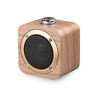 Loa du lịch Bluetooth - Hàng nhập khẩu