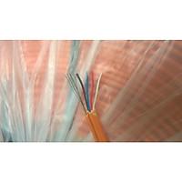 Cáp viễn thông 4 lõi mềm có cường lực 500m (sợi cam)