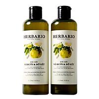 Combo 2 Dầu gội bưởi & Bồ Kết Herbario giảm rụng tóc, phục hồi tóc (2 chai x 270ml)