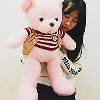 Gấu bông cao cấp Teddy áo len màu hồng xinh xắn