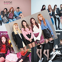 Poster Blackpink 8 tấm A3
