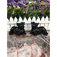 Cặp Tỳ Hưu phong thủy đá thạch anh đen - Dài 10 cm