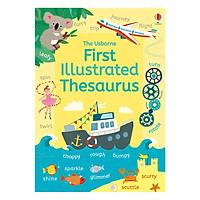 Usborne First Illustrated Thesaurus