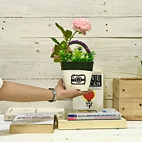 Hoa giả chậu hoa lụa Mẫu đơn mix cắm sẵn trên chậu xi măng