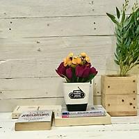 Chậu hoa giả Tulip mix hồng bi lụa để bàn văn phòng đẹp