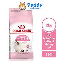 [2kg] Hạt Royal Canin Kitten Cho Mèo Con