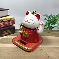 Mèo Thần Tài vẫy khách áo đỏ năng lượng mặt trời cao 10cm