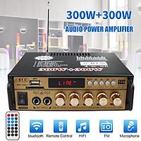 HIFI MP3 Power amplifier Card U Disk Radio Car Home Audio Stereo Bass Speaker Amplifier Booster U Disk Radio 12 V 220 V