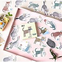 Hộp 45 Miếng Dán Stickers Trang Trí Động Vật Mèo