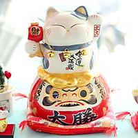 """Mèo Thần tài Jinshi 3 chuông ngồi Daruma 25cm """"Kim Vận Mãn Tái"""" (có video sản phẩm)"""