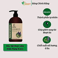 Dầu gội dược liệu sạch hỗ trợ điều trị rụng tóc Ecoco với chiết xuất oải hương, ô liu