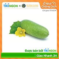 [Chỉ giao HCM] - Bí Đao (trái 400gr - 600gr) - được bán bởi TikiNGON - Giao nhanh 3h