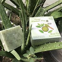 Xà phòng handmade Trà Xanh - Adeva Naturals - Set 6 soap