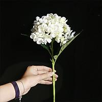 Hoa Giả - Combo 10 Hoa Cẩm Tú Cầu