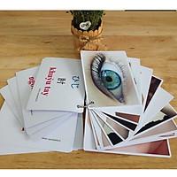Flashcard tiếng Nhật cho bé KatchUp size lớn 9×13 – Cơ Thể