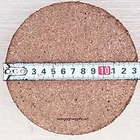 Bộ 4 mùn dừa ép bánh tiện lợi dạng tròn đã qua xử lí
