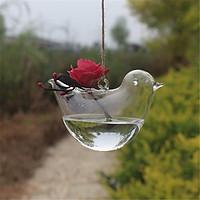 Bình Thủy Tinh Trồng Cây Hình Chim