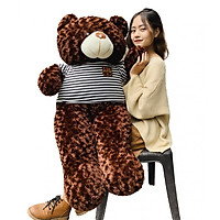 Gấu bông teddy cao cấp khổ vải 1m4 cao 1m2