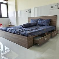 Giường Vai Đứng FINE FG157 (140cm x 200cm) Mẫu hiện đại tối giản, thiết kế đẹp sang trọng
