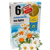 Hộp 6 nến thơm tinh dầu Tealight Admit Cammomile QT026110 - hoa cúc la mã