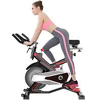 Xe đạp tập thể dục MK-100