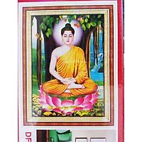 tranh đính đá Phật ngồi gốc bồ đề 59x80cm - chưa đính