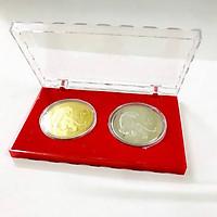 Cặp Xu hình con cọp 1 Yi Trung Quốc Vàng Bạc, Trưng bày trong nhà, trên bàn sách, bàn làm việc, làm quà tặng độc lạ ý nghĩa, Kích thước 12 x 8 x 1.5cm, Màu Vàng Bạc - TMT Collection - SP005326
