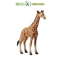 Mô hình thu nhỏ: Hươu Cao Cổ con - Reticulated Giraffe Calf, hiệu: CollectA, mã HS 9651061[88535] -  Chất liệu an toàn cho trẻ - Hàng chính hãng