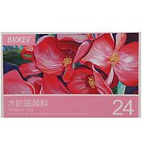 Màu Vẽ Dạng Bột Tuýp Baoke 24 Màu WP802-12ml
