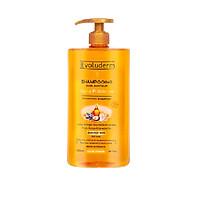 Dầu gội Tinh dầu Argan dành cho tóc khô Shampooing Huile Precieuse Evoluderm 1000ml - 15259