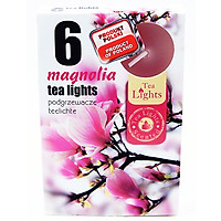 Hộp 6 nến thơm tinh dầu Tealight Admit Magnolia PTT026077 - hoa mộc lan