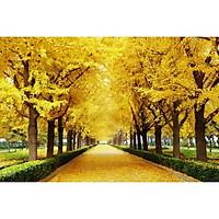Tranh dán tường 3D con đường mùa thu vàng hai hàng cây - vải lụa phủ kim sa (Kích thước theo yêu cầu)