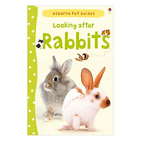 Usborne Pet Guides: Looking after Rabbits
