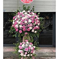 Kệ hoa chúc mừng hồng Đà Lạt