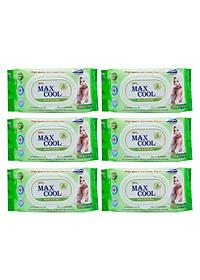 Combo 6 Gói Khăn Ướt Max Cool Không Hương MC100-03 (100 Tờ x 6) - Xanh