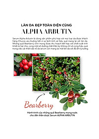 Serum trắng da ALPHA ARBUTIN & HERRS 30ml-2