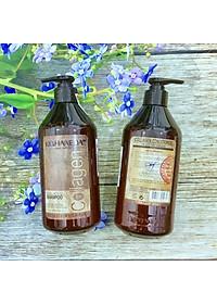Cặp dầu gội xả Top Haneda Collagen Shampoo & Conditioner phục hồi siêu mượt tóc 500ml - Hàng chính hãng-4