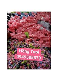 combo-200-xeng-mini-hinh-trai-tim-p103473789-3