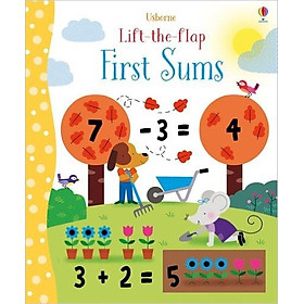 Usborne Lift-the-Flap First Sums
