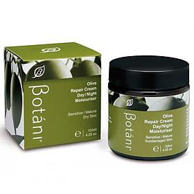 Hình đại diện sản phẩm Kem Olive Dưỡng Ẩm Ngày Và Đêm Botani Olive Repair Cream Day & Night Moisturiser BPSO004 (120g)