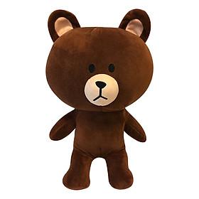 Hình đại diện sản phẩm Gấu Bông Gấu Brown 4 (50cm)